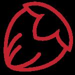 giovanni cogno hazelnuts icon